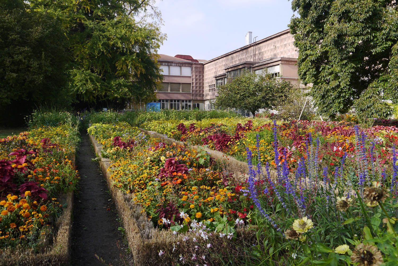 Jardin Dominique Alexandre Godron Lorraine Tourisme