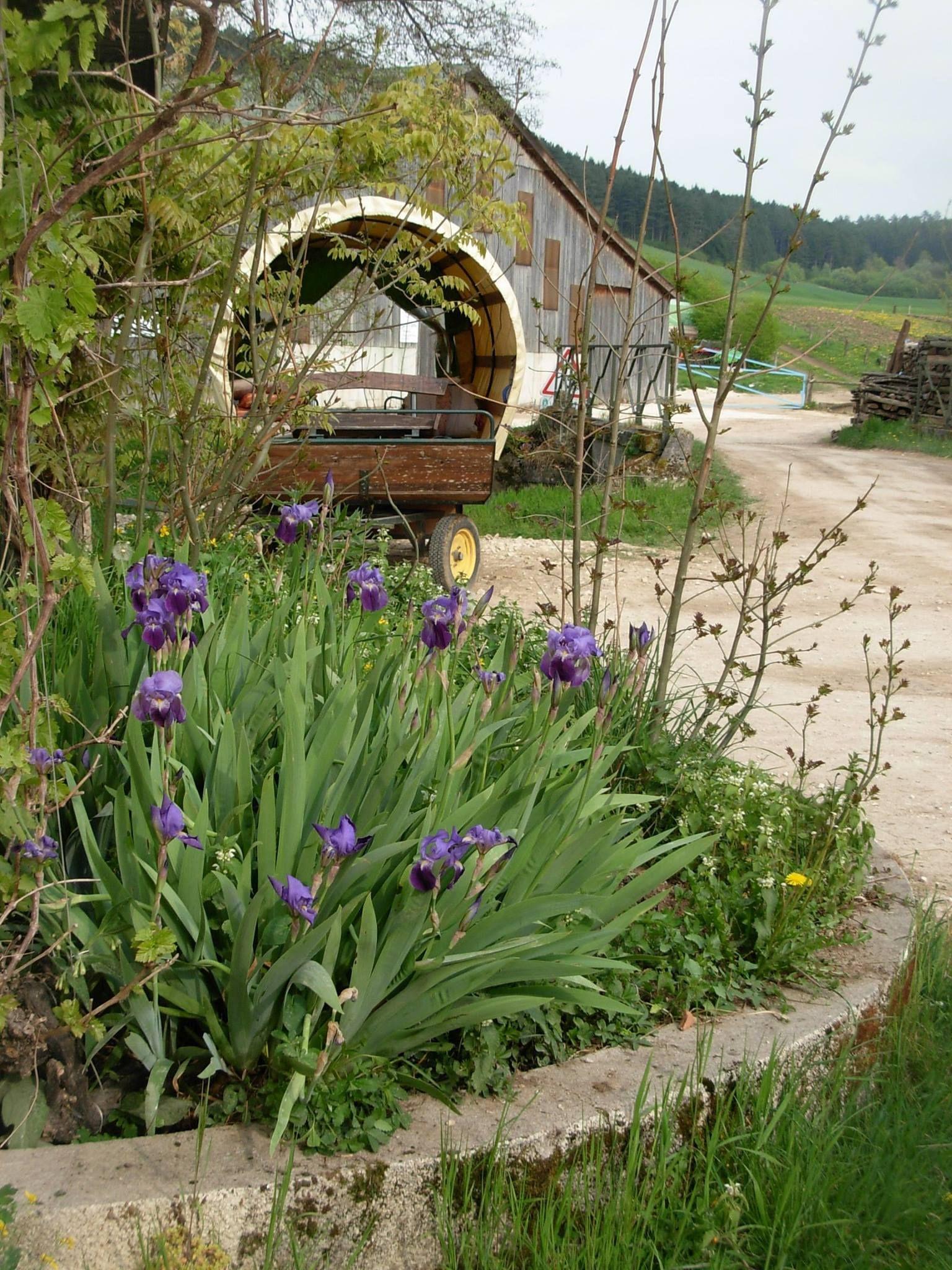 Chambres d hotes la ferme du sonvaux Lorraine Tourisme