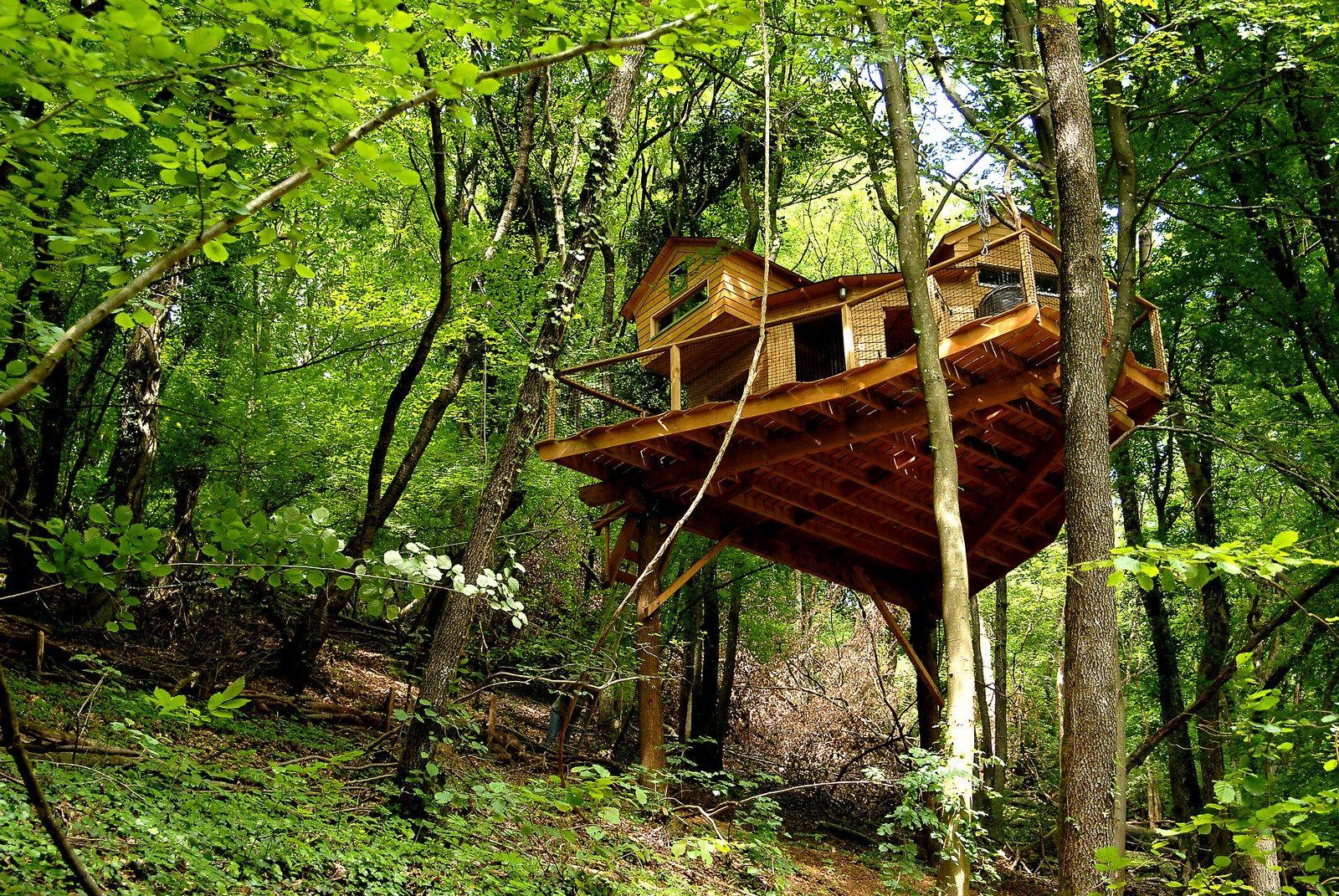 la cabane dans les arbres bacole lorraine tourisme. Black Bedroom Furniture Sets. Home Design Ideas