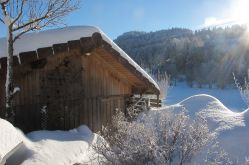 Vosges en Marche