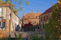 Patrice BUCHER – OT du Pays de Phalsbourg
