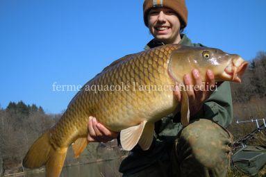 Aquaculturedici3