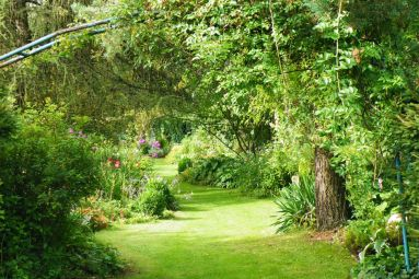 jardin d'Ode