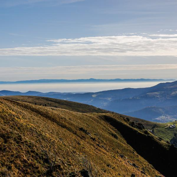Hautes Vosges Entre Lac Et Montagne
